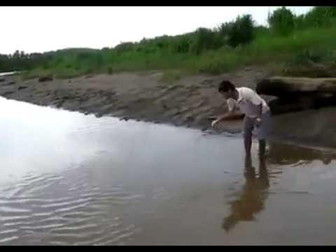 entra in acqua è guardate un po' cosa ne esce!