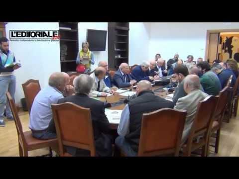 Commissione su randagismo a L'Aquila