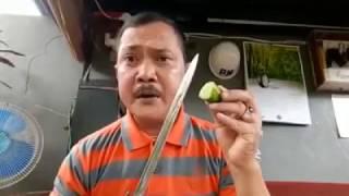 Video Iwan Ahoker yang tantang TNI kini menjadu buronan Anngota TNI MP3, 3GP, MP4, WEBM, AVI, FLV Agustus 2018