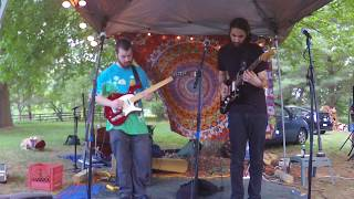 Purple Lotus Summer Solstice party Fat cat Pharm 061717.
