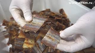 Видео: Нарезка вяленой рыбы на устройстве нарезки с модульным транспортером ИПКС-074-01-200-01МЧ(Н)
