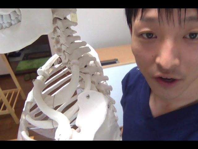 腕のしびれを緩和したければ、肋骨の動きを出せ!