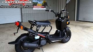 7. 2015 Ruckus Scooter For Sale - Chattanooga TN GA AL area : Honda of Chattanooga (NPS50_