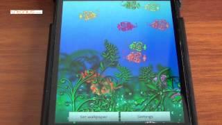 aquarium glam live wallpaper YouTube video