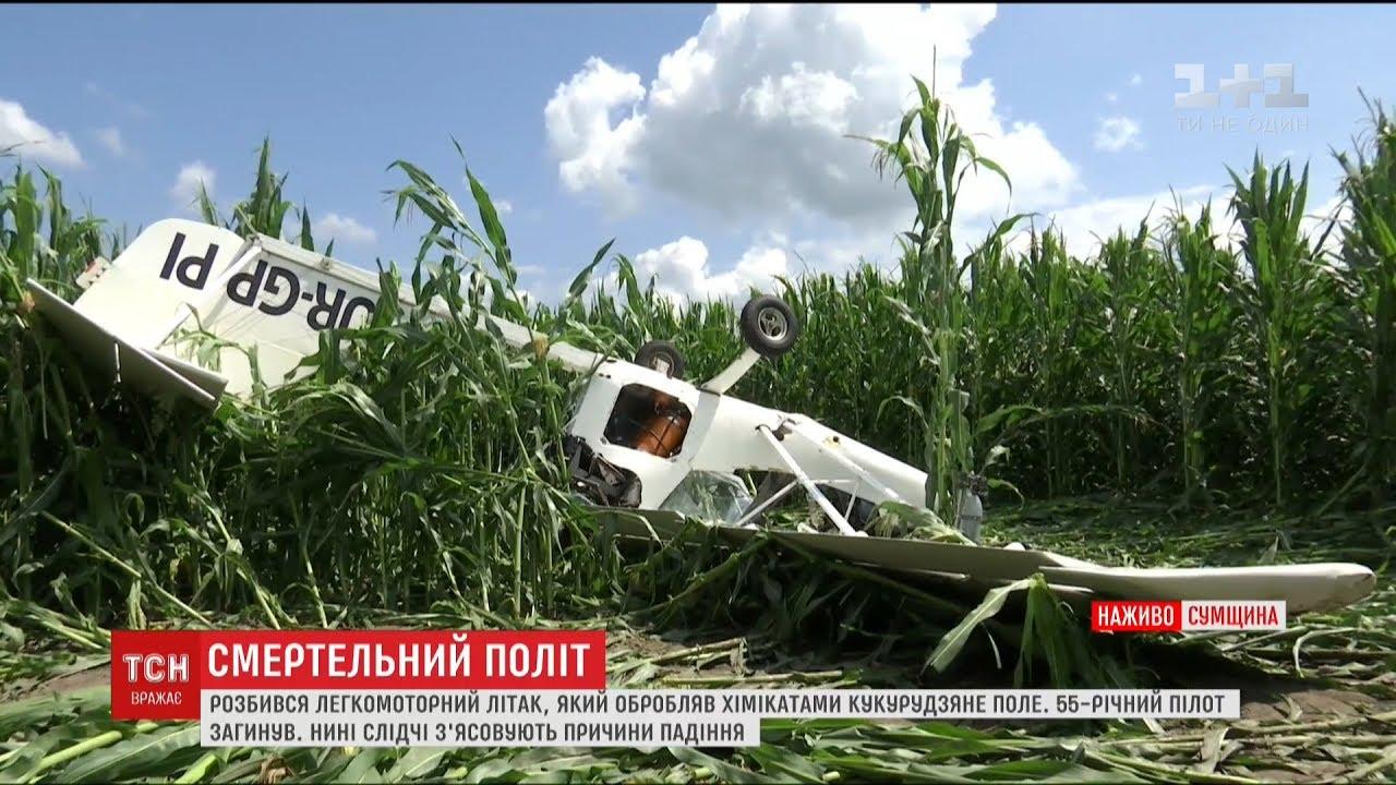 На Сумщине разбился самолет