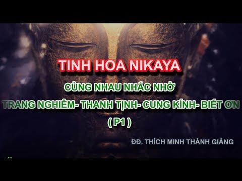 Tinh Hoa NIKAYA – Cùng Nhau Nhắc Nhở - Trang Nghiêm – Thanh Tịnh – Cung Kính – Biết Ơn - P1