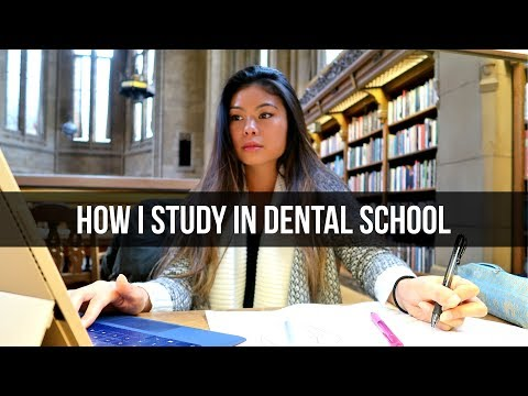 HOW I STUDY IN DENTAL SCHOOL // LauraSmiles