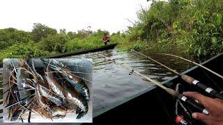 Video Tenyata Sarang Udang Galah di Muara Sungai Kecil MP3, 3GP, MP4, WEBM, AVI, FLV Maret 2019