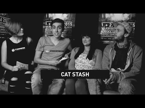 Cat Stash