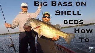 Video Lake Fork Bass Fishing: Shell Bed Tips MP3, 3GP, MP4, WEBM, AVI, FLV Oktober 2018