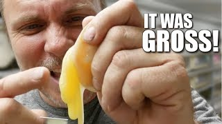 I ATE A SNAKE EGG!! WHATS INSIDE!! | BRIAN BARCZYK by Brian Barczyk