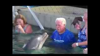 Man And Dolphin Have Spitting War