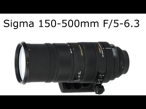 Sigma 150-500mm F/5-6.3 lens Review (With Sample Images)