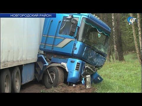 Шесть человек, предположительно граждане Украины, погибли сегодня в ДТП в Новгородской области