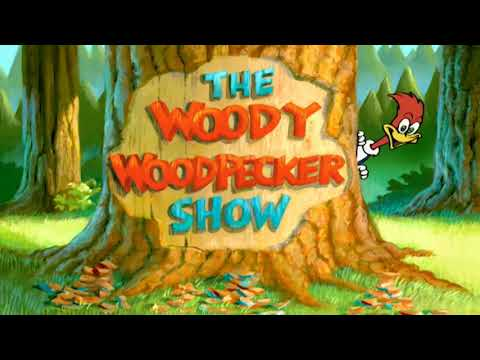 The New Woody Woodpecker Show (1999-2002) (All Intro Gags)