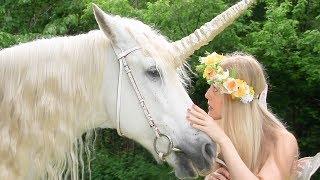 Fairy Sarah and Friends - Fairy Sarah - Luna Rose the magic Unicorn   Learning For Kids