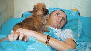 Влада Елфимова выписали из ОКБ-2