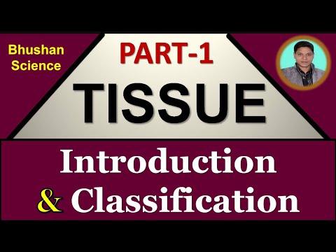Part 1 : Tissue Level of Organization | Tissue Introduction (Hindi) | B. Pharm | Nursing | Medical