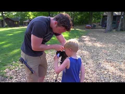 SEE Internship Experience - Josiah Pederson
