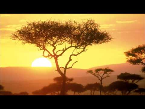 Relax Music – Around The World – Africa – ONE HOUR of stressless african instrumental music