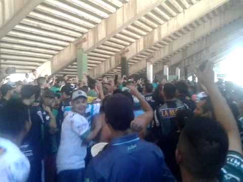 Video - Nueva chicago hinchada vs racing - La Barra de Chicago - Nueva Chicago - Argentina
