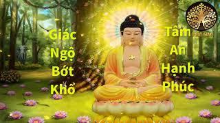 Mỗi Đêm Nghe  7 Câu Truyện Phật Giáo Ý nghĩa  Này hoàn thiện bản thân thay đổi số mệnh , Ngủ ngon