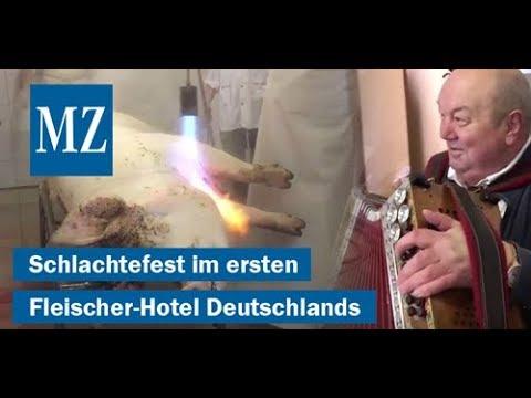 Schlachtefest im ersten und einzigen Fleischer-Hotel  ...