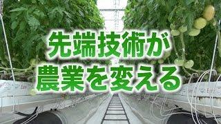 【先端技術が農業を変える!】国際競争力を持った強い農業とは(5分)