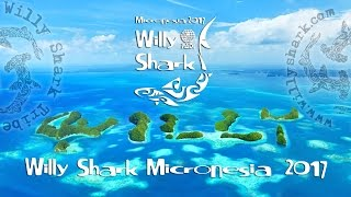 Video del viaggio a Palau in Micronesia. Immersioni al Blue Corner, German Channel, Blu Holes, Sandy Paradise, Helmet Wreck, ...