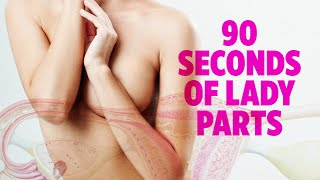 16 Fascinating Facts About the Female Anatomy full download video download mp3 download music download