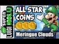 New Super Luigi U 100% Guide  (Wii U Gameplay Guide)