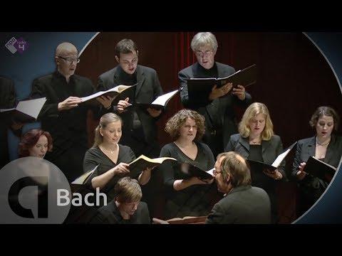 motet - J.S. Bach: Motet BWV 227 'Jesu, meine Freude' Vocalconsort Berlin o.l.v. Daniel Reuss Opgenomen tijdens de BachDag i.s.m. de Organisatie Oude Muziek 29 janua...