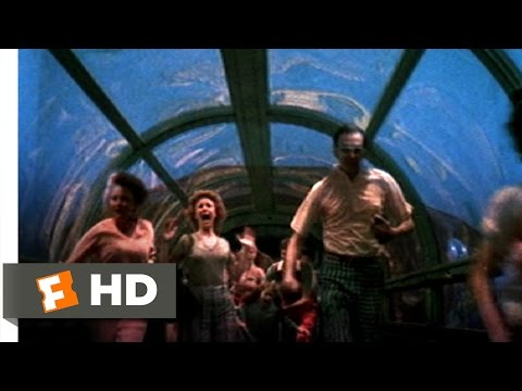 Jaws 3-D (6/9) Movie CLIP - Please Walk, Don't Run (1983) HD