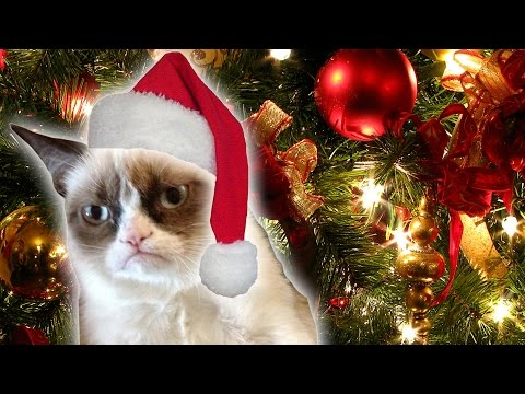 Grumpy Cat's Worst Christmas Ever Trailer | DAILY REHASH | Ora TV