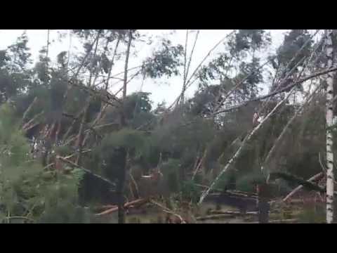 Krajobraz po burzy - nieprzejezdne drogi, zerwane dachy i brak prądu