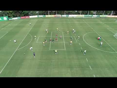 Treinamento #2 - Sociedade Esportiva Palmeiras