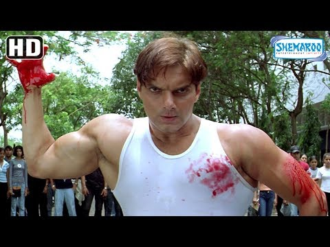 Video Sohail Khan fight with Rajpal Yadav - Maine Dil Tujhko Diya - Bollywood Action-Romantic Movie download in MP3, 3GP, MP4, WEBM, AVI, FLV January 2017