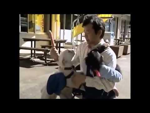 Chú Khỉ Thông Minh Phiêu Lưu Ký 36