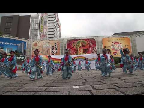 にっぽんど真ん中祭り2016 本祭2日目。【昭和保育園「たちばな」】?/栄小公園