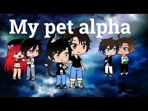 My pet alpha episode 7.|I'm sorry?!|