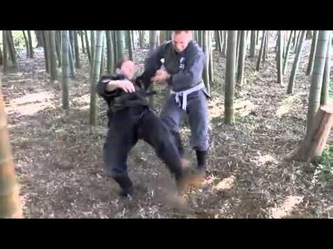 Bujinkan Dojo Budo Taijutsu 武神館道場武道体術