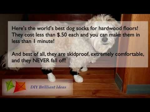 Dog Socks For Hardwood Floors-Get Dog Booties,or Shoes For Hardwood Floors
