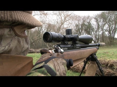 The Airgun Show -- rabbit hunting and the iconic Weihrauch HW77