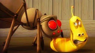 Video LARVA - SPIDER ATTACK   Cartoon Movie   Cartoons For Children   Larva Cartoon   LARVA Official MP3, 3GP, MP4, WEBM, AVI, FLV Maret 2019