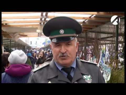 Проверка саженцев в розничной торговле Астраханской области