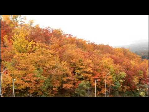 Blue Mountai n Fall Color Oct 07,2012 (видео)