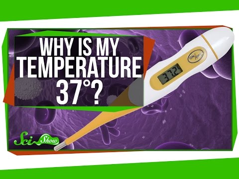 Why Is My Body Temperature 37 Degrees