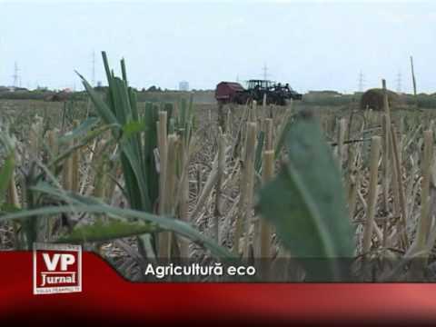 Agricultură eco