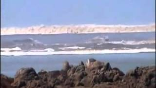 Video THAILAND TSUNAMI 2004 RAW FOOTAGE MP3, 3GP, MP4, WEBM, AVI, FLV Maret 2019