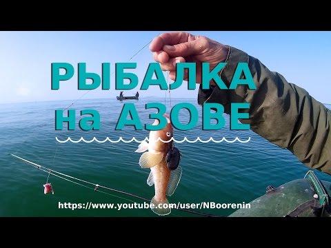 прогноз клева на азовском море